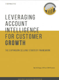 expansion selling ebook