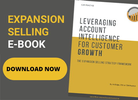 DOWNLOAD EXPANSION SELLING EBOOK